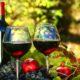 Unsere Weinempfehlung